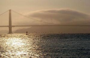golden gate bridge seagulls bay ocean clouds