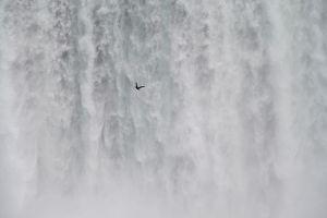 seagull falls 2