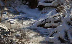 snow day 9  jan 3